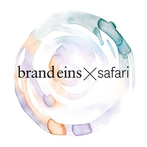 brand-eins_safari